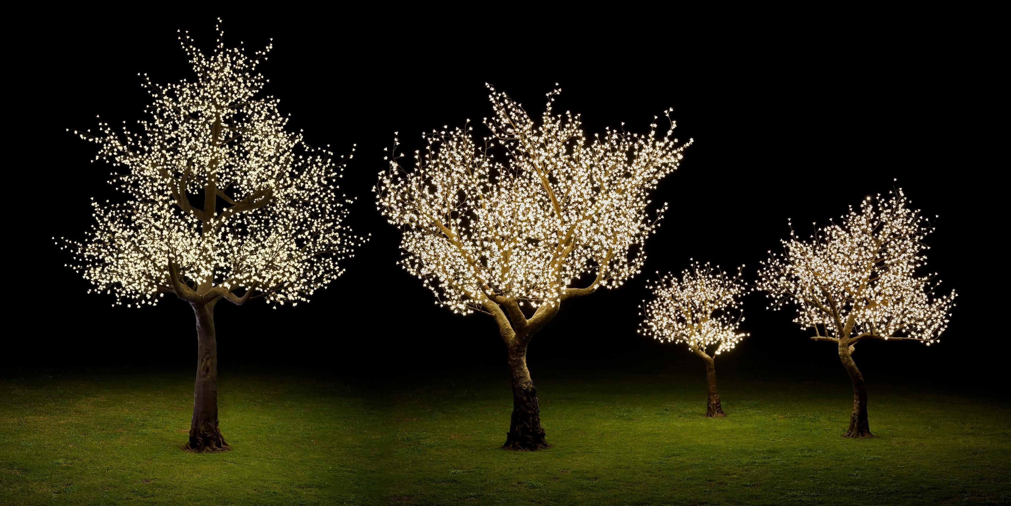 Bäume mit LED-Leuchten